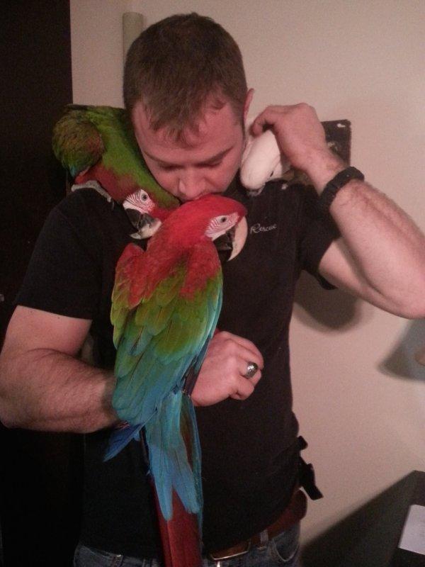 Help! My bird and I need training!